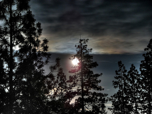 Misty Moon: HDR Rendering of the view from the deck of my parents place in Cobb, CA.