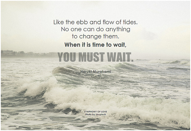 Like the ebb and flow of tides. No one can do anything to change them. When it is time to wait, you must wait. - Haruki Murakami